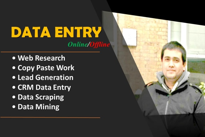 I will do data entry, internet research and data analysis
