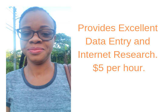 I will do internet research and data entry
